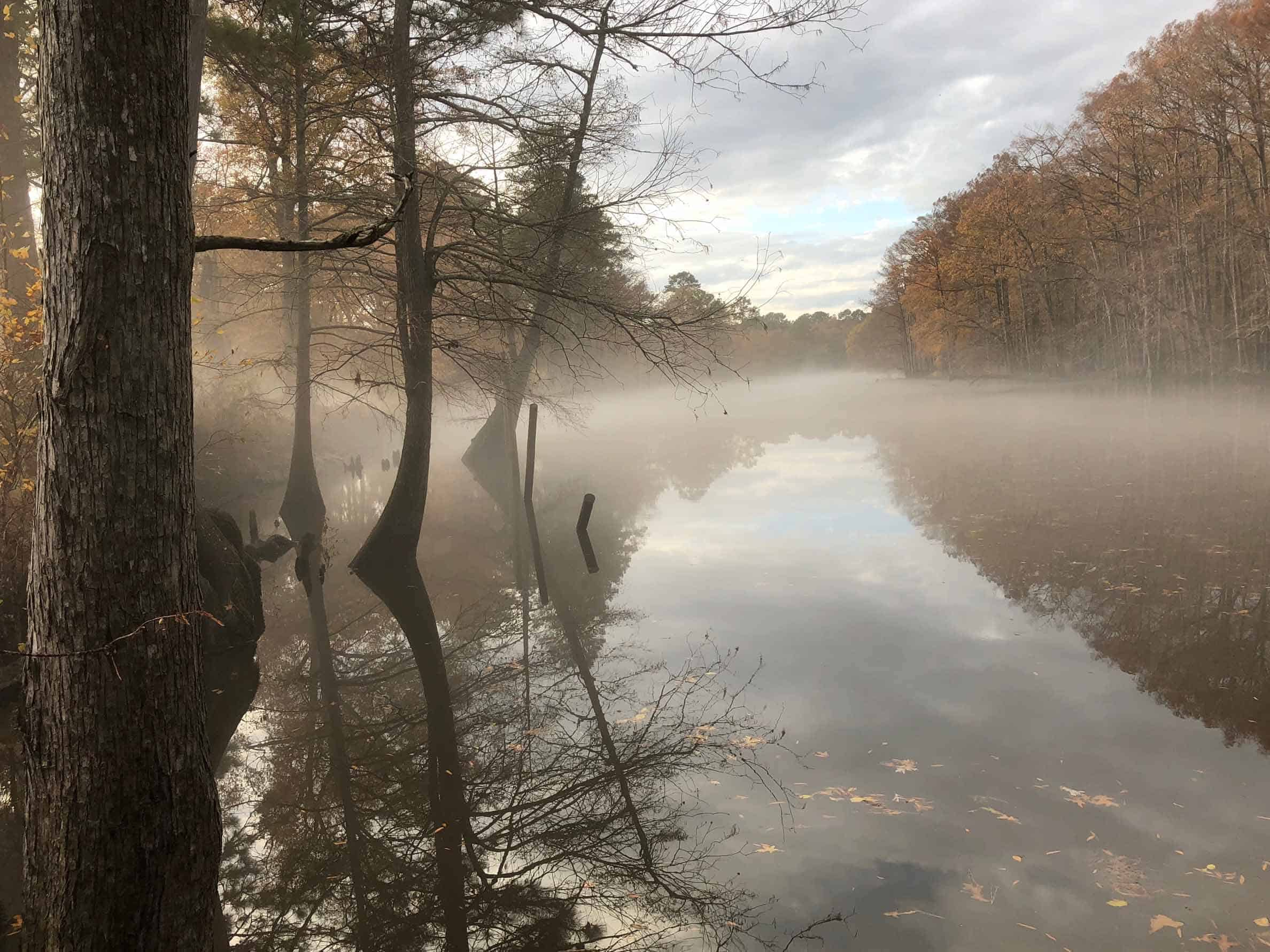 BackWater-Jacks-river-fog-view-rentals