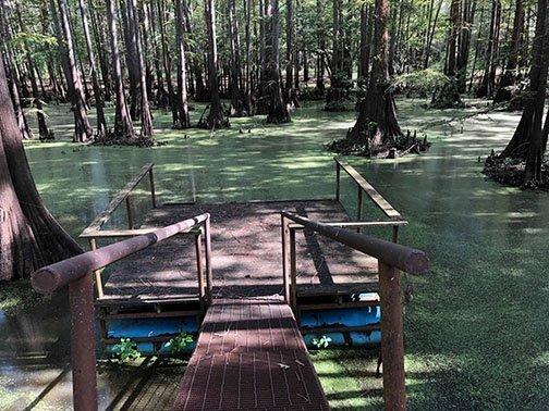 BackWater Jack's • Kayak Cabin