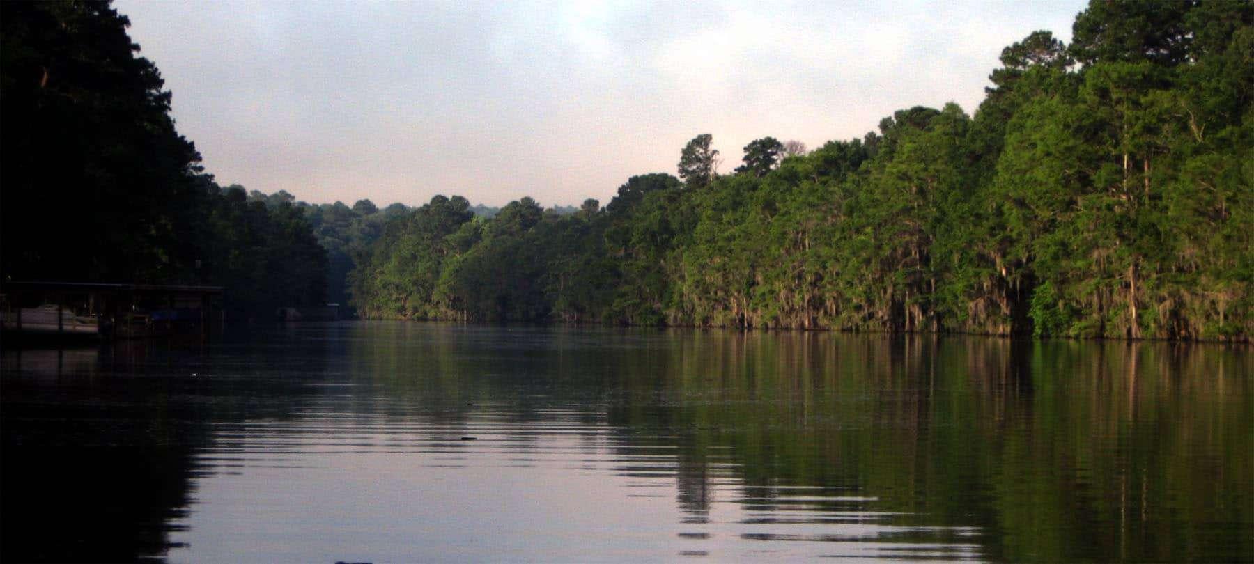 Caddo-Lake-things-to-do